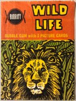 Jungle life , Barratt engelse uitgave